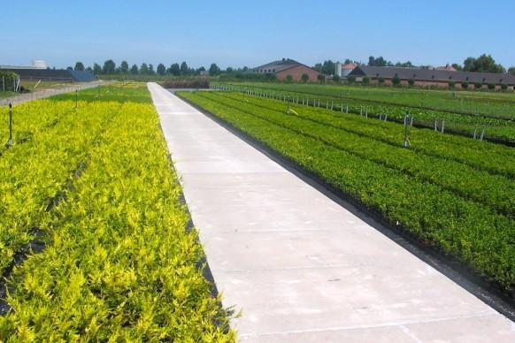 Agrarbodenplatte mit Befestigungssystem